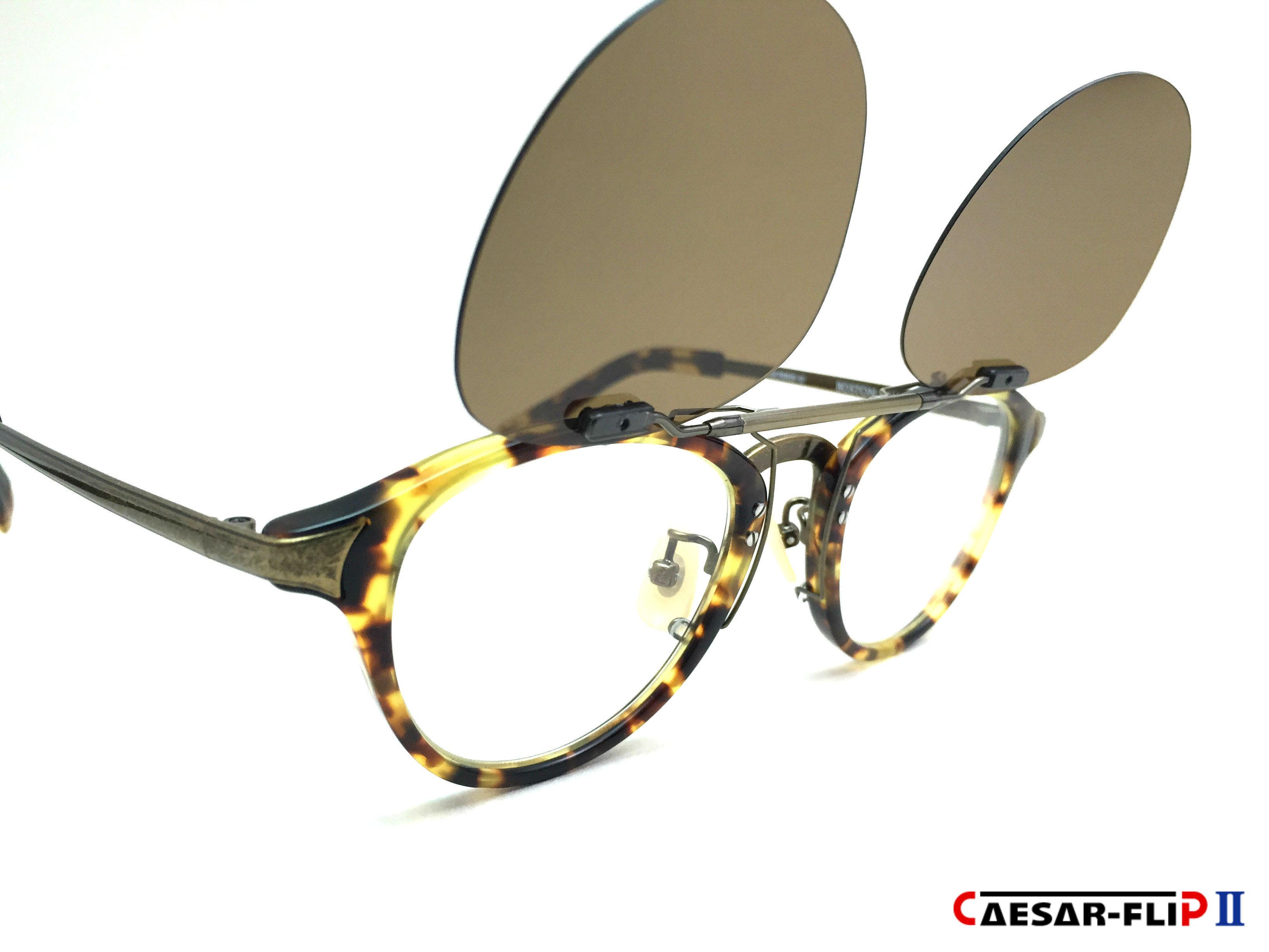 CAESAR-FLIP II